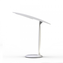 Oval shape LED desk lamp